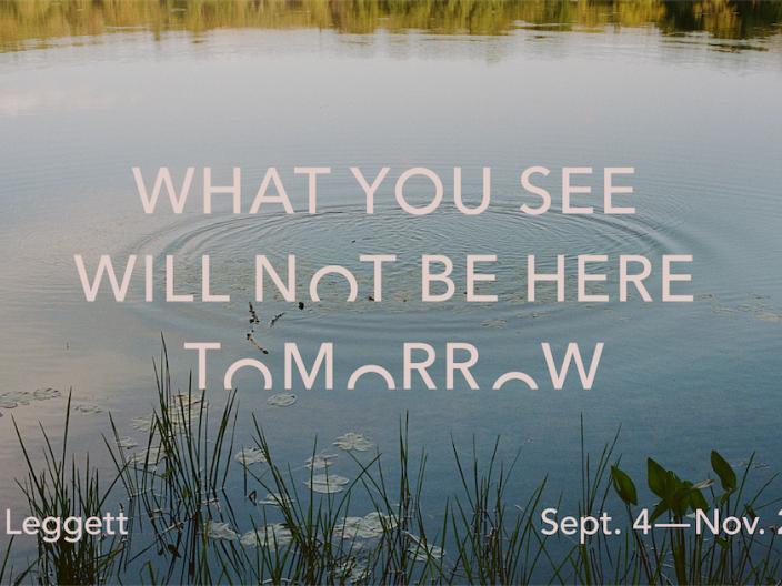 What you see will not be here tomorrow — Aislinn Leggett