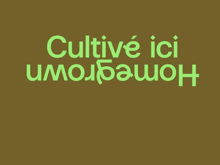 Festival de musique CULTIVÉ ICI / HOMEGROWN